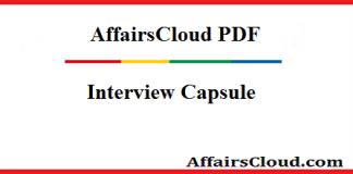 Interview Capsule