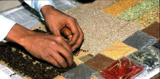 Codex Alimentarius Commission adopts Codex norms for three spices