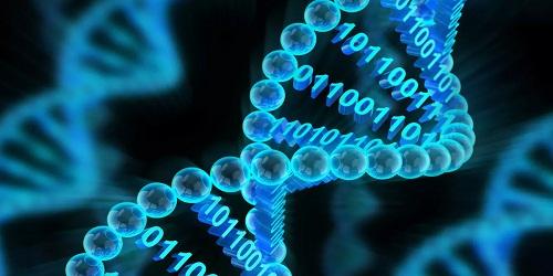 Digital information into DNA