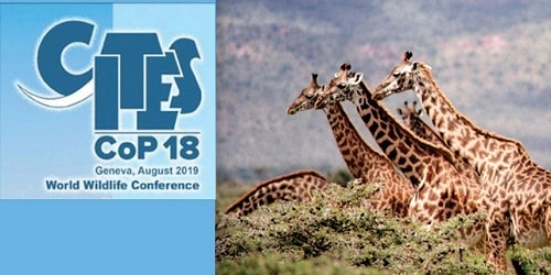 18th meeting of Conference of the Parties(CoP) of CITES