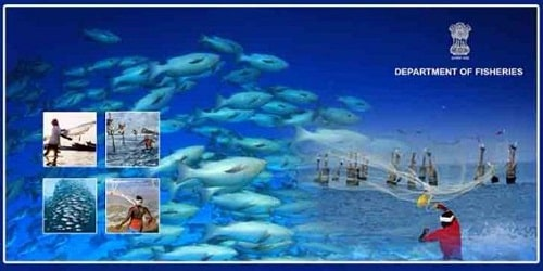 Ministry of Fisheries, Animal Husbandry and Dairying