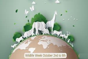 Wildlife week