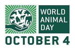 World Animal day 2019