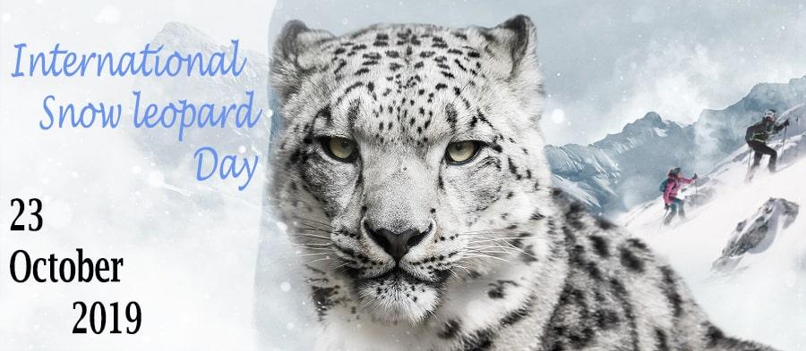 international snow leopard day