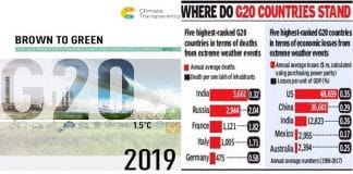 Brown to Green Report 2019 G 20