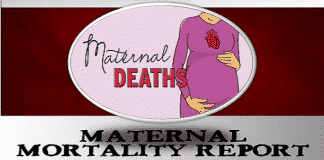 Maternal-Mortality-Report