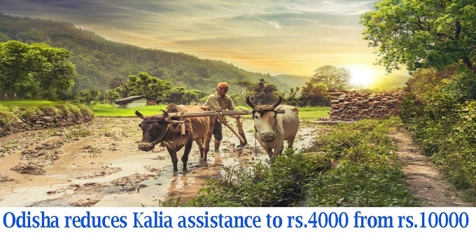 Odisha cuts financial aid to farmers under Kalia to Rs 4,000 from Rs 10,000