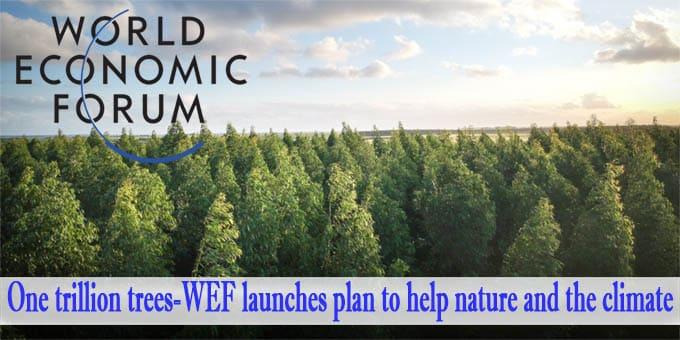 One trillion trees - World Economic Forum