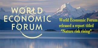world economic forum nature risk rising