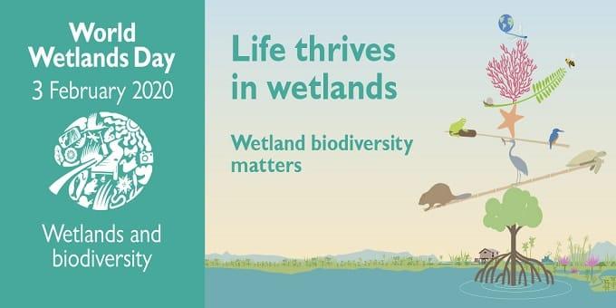 World Wetlands Day 2020