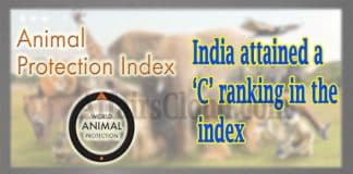 Animal Protection Index
