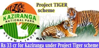 Kaziranga under Project Tiger scheme