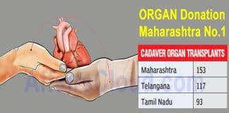 organ donation Maharashtra no